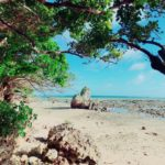沖縄の魅力!「東洋のガラパゴス」と呼ばれる理由とは?1