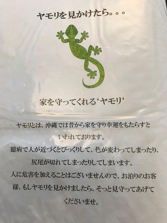 ヤモリは縁起がいい?沖縄では家守=家の守り神!鳴き声がするの?4